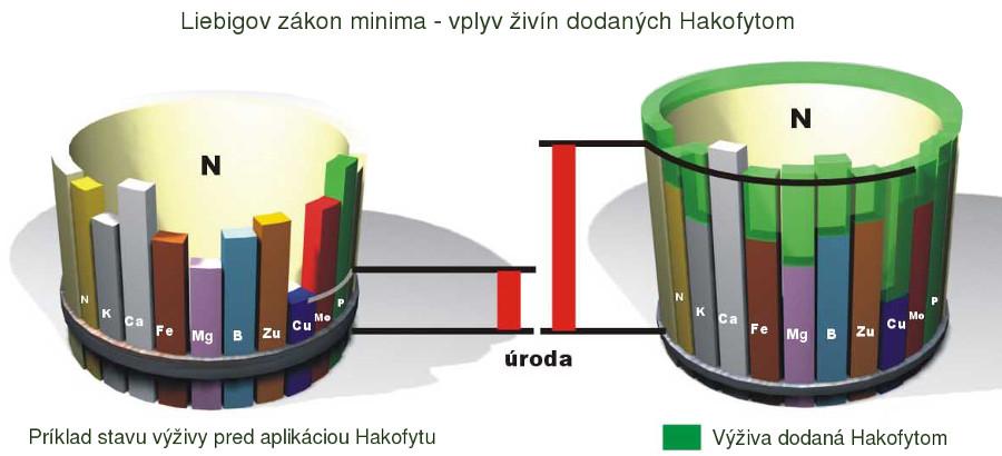 Liebigov zákon minima - vplyv živín dodaných Hakofytom
