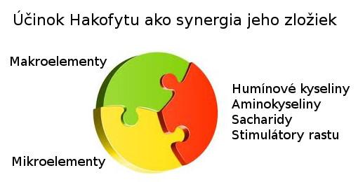 Účinok Hakofytu ako synergia jeho zložiek